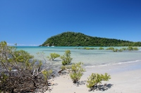 Cape Tribulation Australie Djoser