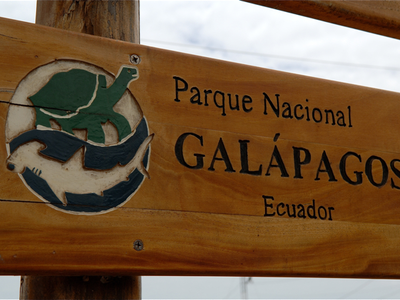 Galapagos; the world's most amazing zoo